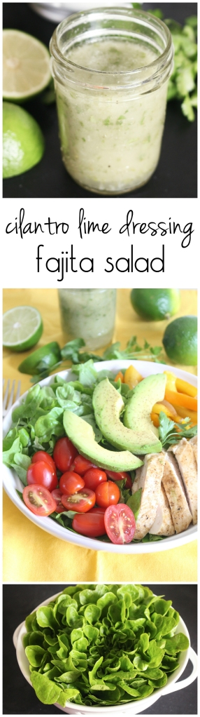 Fajita Salad with Cilantro-Lime Vinaigrette from The Ruby Kitchen